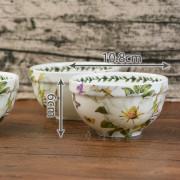 4吋白山茶size